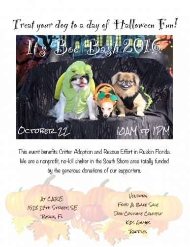 Boo Bash October 22, 2016 10 am to 1 pm/photo credit CARE Animal Shelter