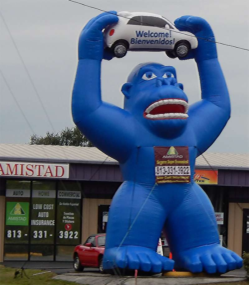 Amistad Insurance with giant inflated King Kong holding car above his head in Ruskin, FL