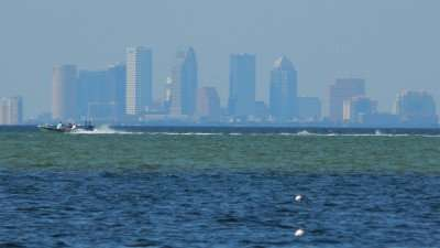 November 17,2015 - speed boat racing in Tampa Bay with Tampa in background
