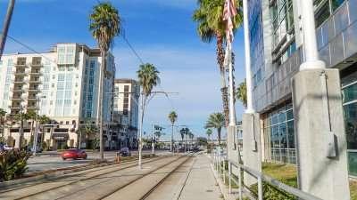 Streetcar tracks next to Tampa Port Authority Building/photonews247.com