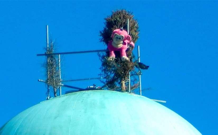 Ape Ollo on top of Apollo Beach Water Tower on 41 across from Winn Dixie, Ruskin, FL
