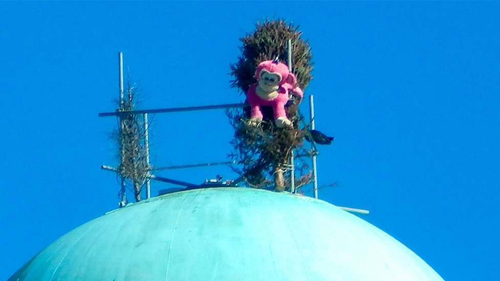Ape Ollo On Top Of Apollo Beach Water Tower 41 Across From Winn Dixie