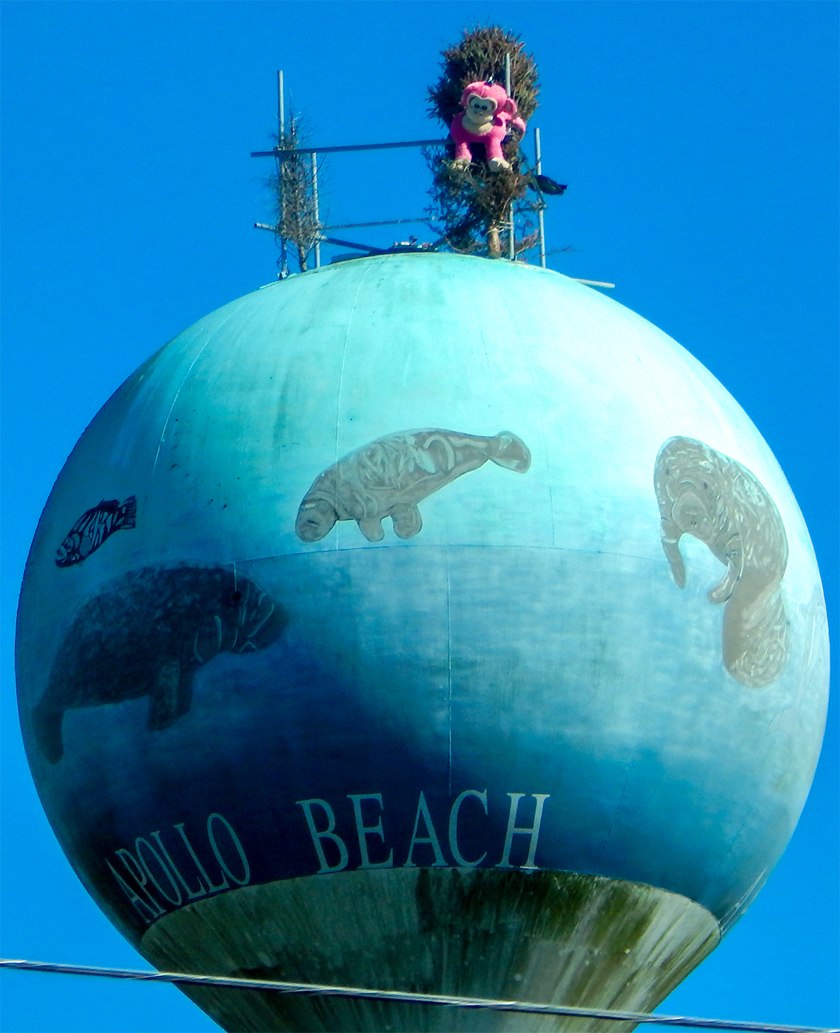 Pink stuffed toy monkey on tied to bush on top of Apollo Beach Water Tower in US 41