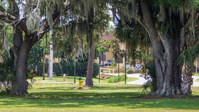 A nice quite shaded area to picnic at the Kings Point Main Clubhouse, Sun City Center/photonews247.com