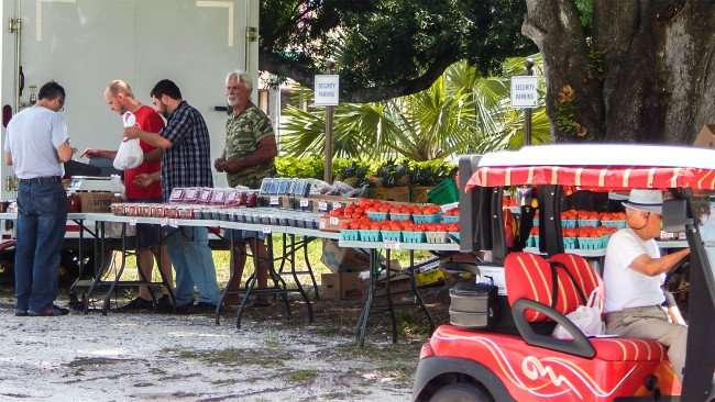 Man in golf cart drives away after shopping at Kings Point Farmers Market, Sun City Center