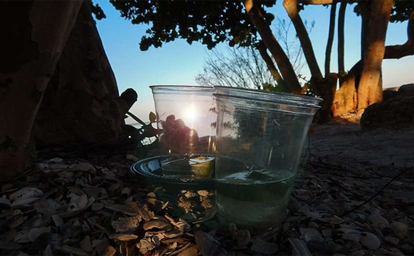 MAY 10, 2015: Two empty plastic cups and dish from the night before on private beach at Sunset Grille in Little Harbor, Ruskin South Shore, FL / Photo News 247