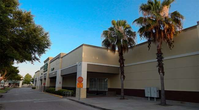 MAY 11, 2015: Palm Trees at Publix Super Market, Kings Crossing, Sun City Center FL / Photo News 247