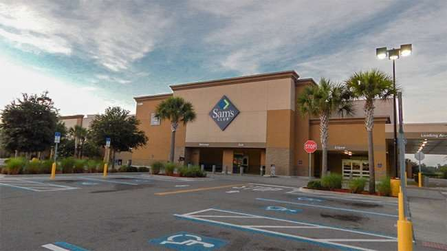 MAY 15, 2015 - Palm trees in front of Sams Club at 10385 Big Bend Rd, Riverview, FL