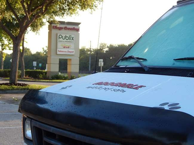 MAY 18, 2015 - Adogable van in Kings Crossing, Sun City Cente, FL