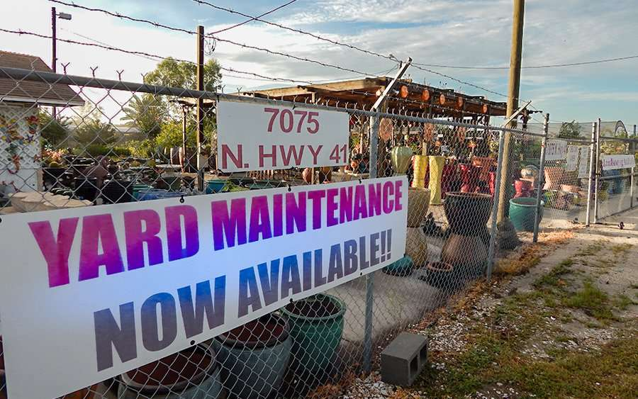 2017 Keep It Green Nursery Yard Maintenance Now Available Us 41