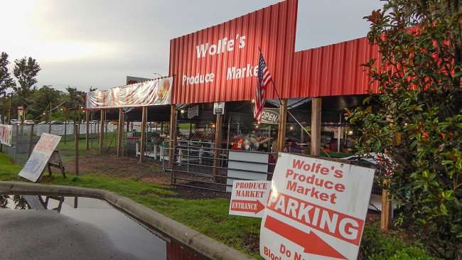 June 11, 2015 - Wolfe's Product Market, Riverview, FL
