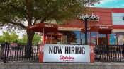 June 23, 2015 - Qdoba Mexican Grill Restaurant hiring in Brandon FL
