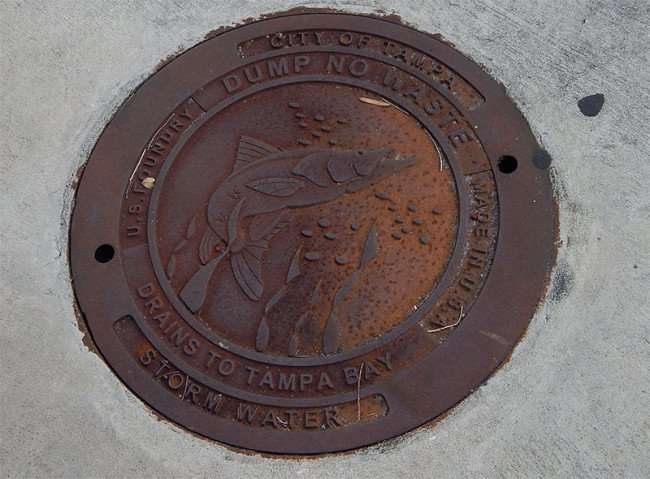 NOV 8, 2015 - City Of Tmpa Sewer lid with fish image at corner of Ashley Drive and Madison Street, downtown Tampa, FL/photonews247.com