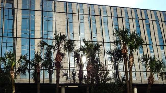 AUG 23, 2015 - MACDILL PARK Downtown Tampa, FL/photonews247.com/photonews247.com