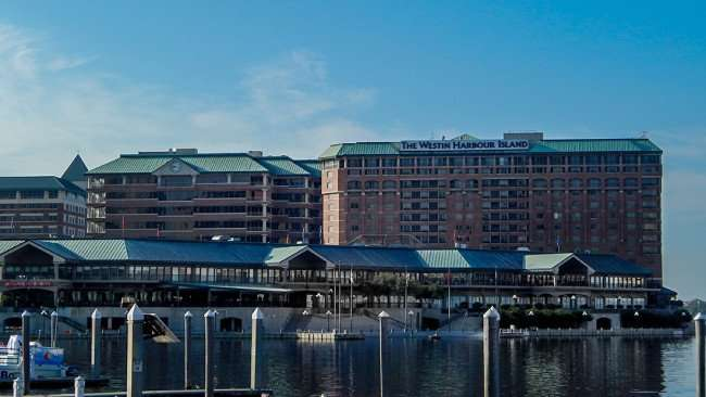 AUG 9, 2015 - Docks at The Westin Harbour Island Tampa, FL/photonews247.com