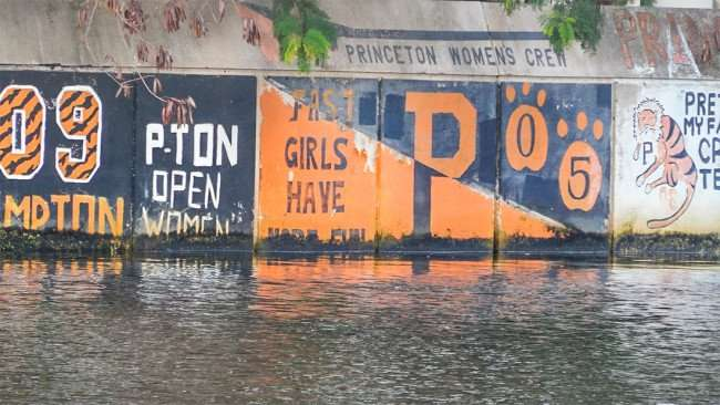 AUG 23, 2015 - Graffiti on Hillsborough River seawall PRINCETON WOMEN'S CREW, Fast Girls Have More Fun 05, Tampa, FL/photonews247.com