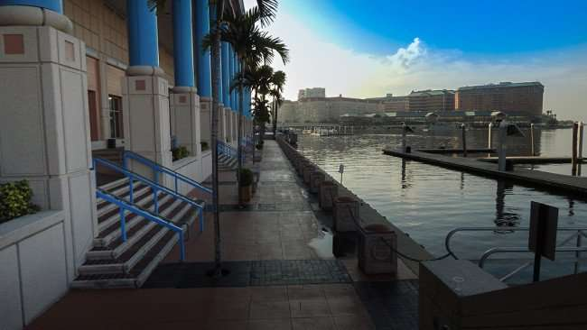 AUG 9, 2015 - Riverwalk path behind the Tampa Convention Center in Downtown Tampa/photonews247.com