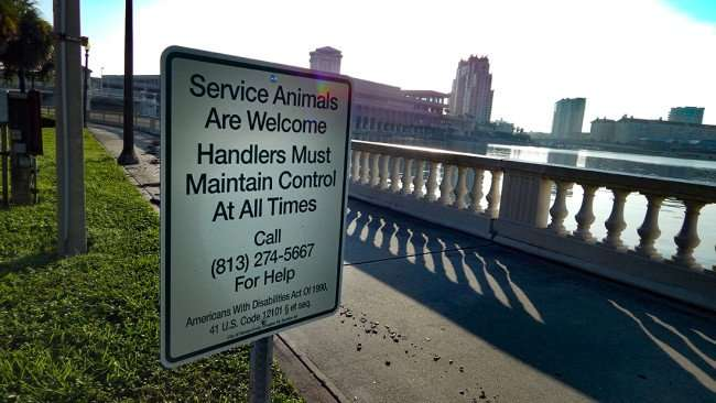 AUG 9, 2015 - Service Animals Welcome sign on Bayshore Walk with Marriott (tallest building) in background in Downtown Tampa FL/photonews247.com