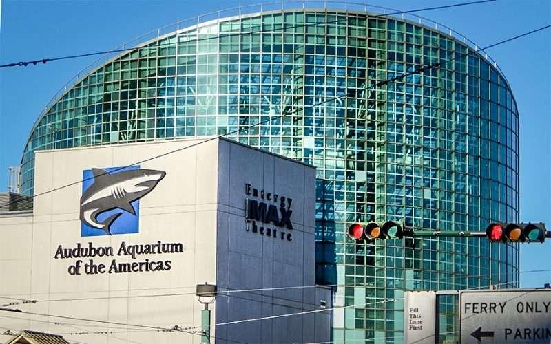 SEPT 13, 2015 - Audubon Aquarium of the Americas and Entergy IMAX Theatre, New Orleans/photonews247.com