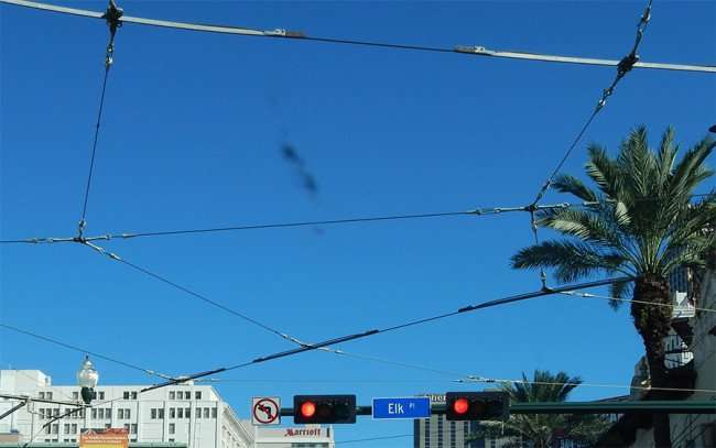 SEPT 13, 2015 - Cables look like spiders web for streetcars on Canal and Elk Street in New Orleans/photonews247.com