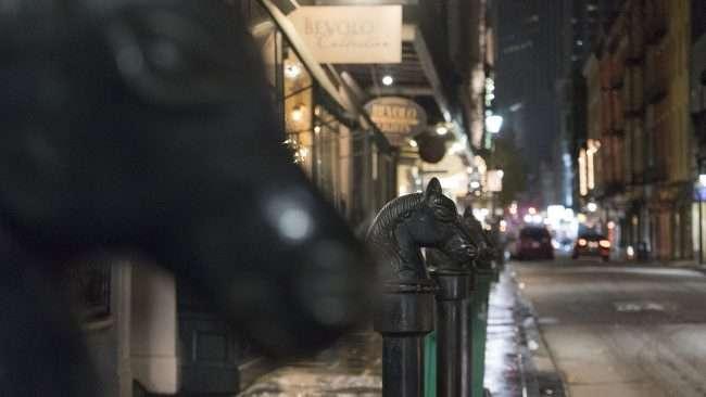 Dec 21, 2017 - Steal horse heads French Quarter NOLA/photonews247.com