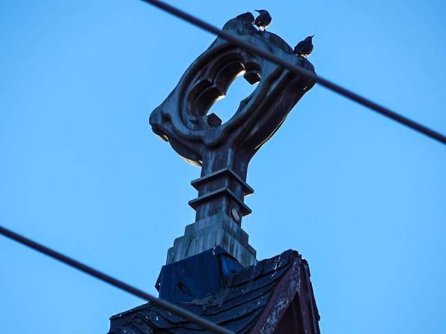 OCT 10, 2015 - Birds at very top of Methodist Episcopal Church in Mineral Point/photonews247.com