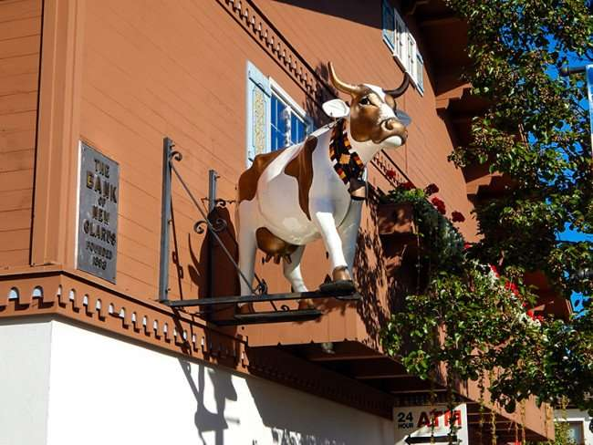 OCT 10, 2015 - Cow statue attatched to building outside 2nd floor level of Bank Of New Glarus/photonews247.com