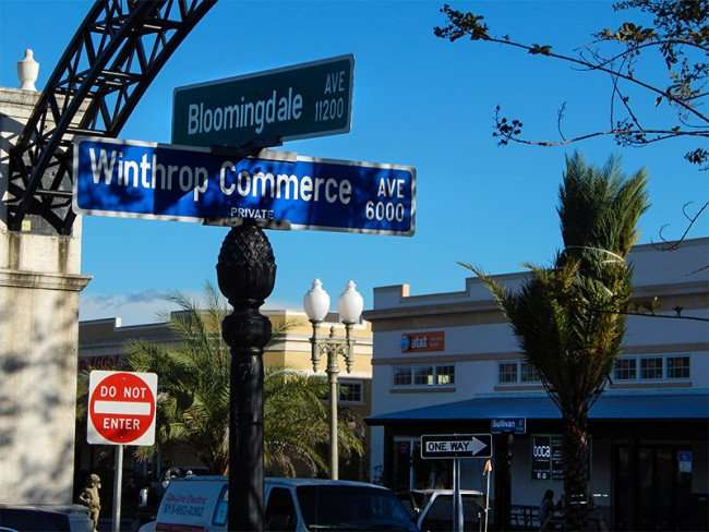 NOV 10, 2015 - Boca Brandon from Bloomingdale Ave and Winthrop Commerce Ave, Riveview, FL/photonews247.com