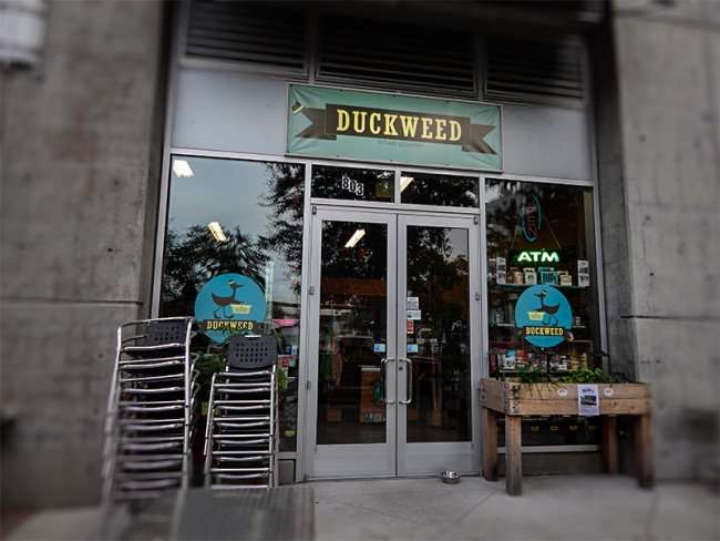NOV 15, 2015 - Duckweed urban grocery store front before it opens at The Element apartments, Tampa, FL/photonews247.com