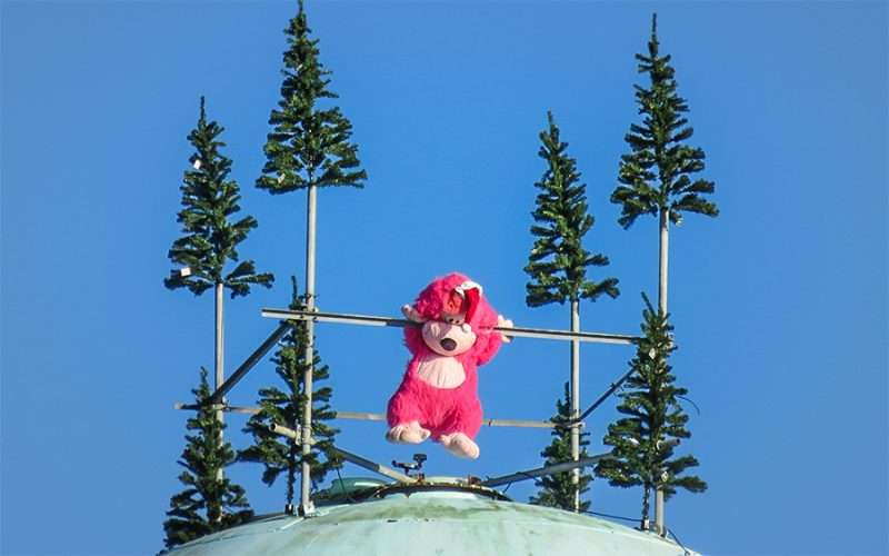 Dec 28, 2015 - Ape Ollo on top of Apollo Beach Water Tower during holidays 2015 along US-41, SouthShore, FL/photonews247.com