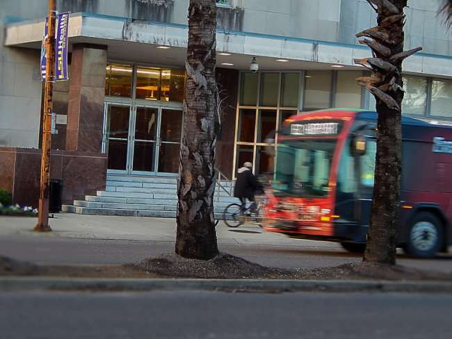 NOV 19, 2015 - LSU School Of Medicine man on bike and bus driving by on Tulane St, New Orleans, LA/photonews247.com