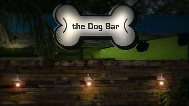 Jan 31, 2016 - The Dog Bar Grand Central District, St Petersburg, FL/photonews247.com