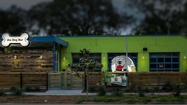 Jan 31, 2016 - The Dog Bar ready to open on Central Ave, St. Petersburg, FL/photonews247.com