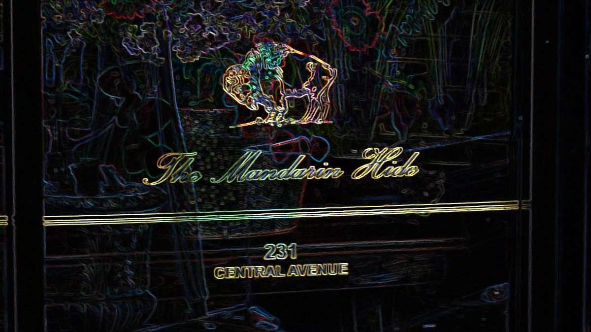 Feb 21, 2016 - The Mandarin Hide bar, Jannus Landing, St Petersburg, FL/photonews247.com