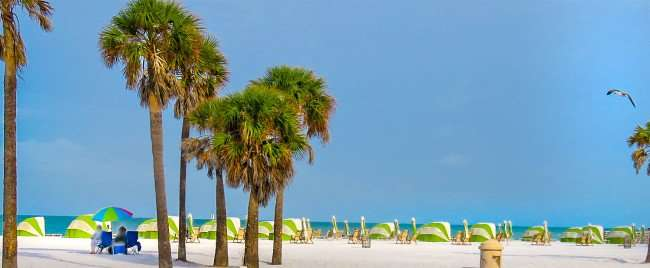 Mar 13, 2016 - Clearwater Beach, a beautiful white sandy beach with palm trees and seagulls/photonews247.com
