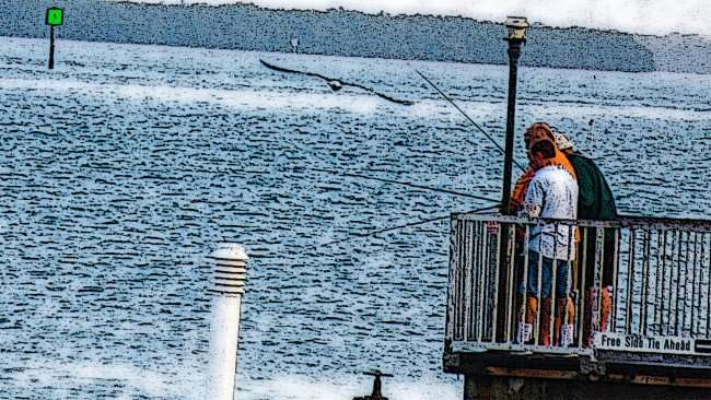 Mar 13, 2016 - People (animated) fishing off dock at Clearwater Harbor Marina/photonews247.com