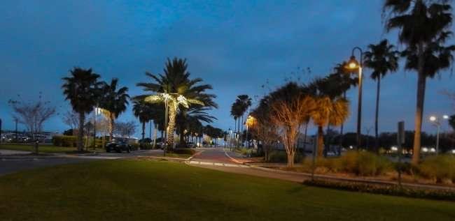 Mar 13, 2016 - Marina downtown Clearwater, FL/photonews247.com