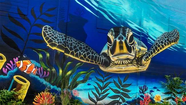 Jan 31, 2016 - Turtle on Mural at Island Nautical Doyle Sailmakers building in Grand Central District St. Pete, FL/photonews247.com
