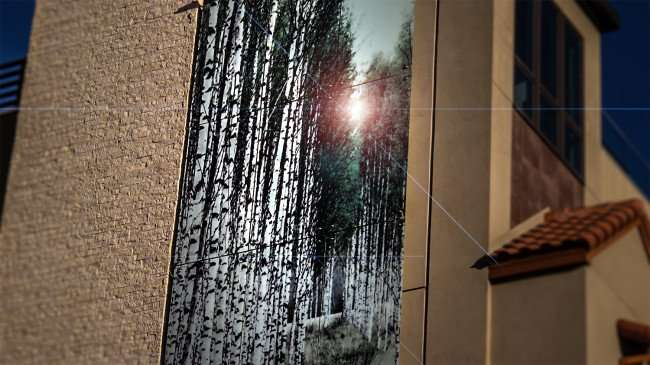 Feb 21, 2016 - Mural painting of woods at The Birchwood Hote in St Petersburg, FL/photonews247.com