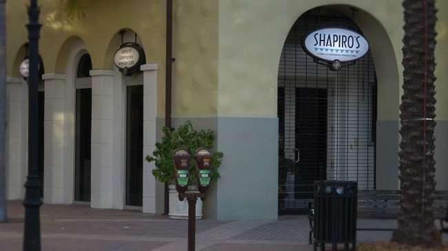 Feb 21, 2016 - SHAPIRO'S Art Gallery, St Pete/photonews247.com