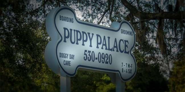 May 1, 2016 - Brandon Puppy Palace sign, Lumsden, FL/photonews247.com