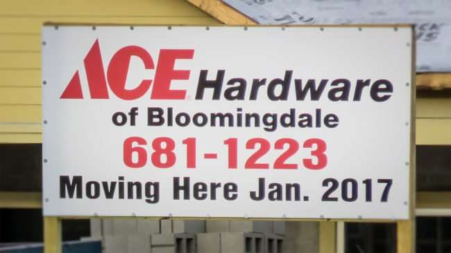 Sep 3, 2016 - Ace Hardware of Bloomingdale Fl moving down the street Jan 2016/photonews247.com