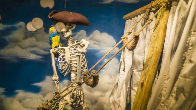Feb 5, 2017 - Skeleton with parot in boat in store window, 7th Ave, Ybor City Tampa FL/photonews247.com