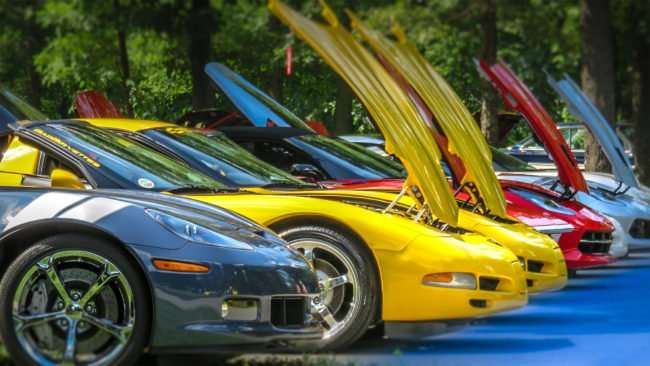 June 11, 2017 - Corvette Club lined up at 31st Annual Super Car Show in Fort Massac State Park presented by Metropolis Rotary Club in Metropolis, IL/photonews247.com