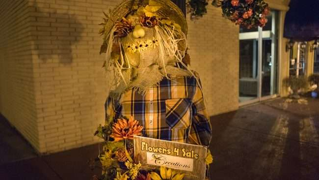 Oct 8, 2017 - Scarecrow Flowers For Sale by Bank on Market St, Metropolis, IL/photonews247.com