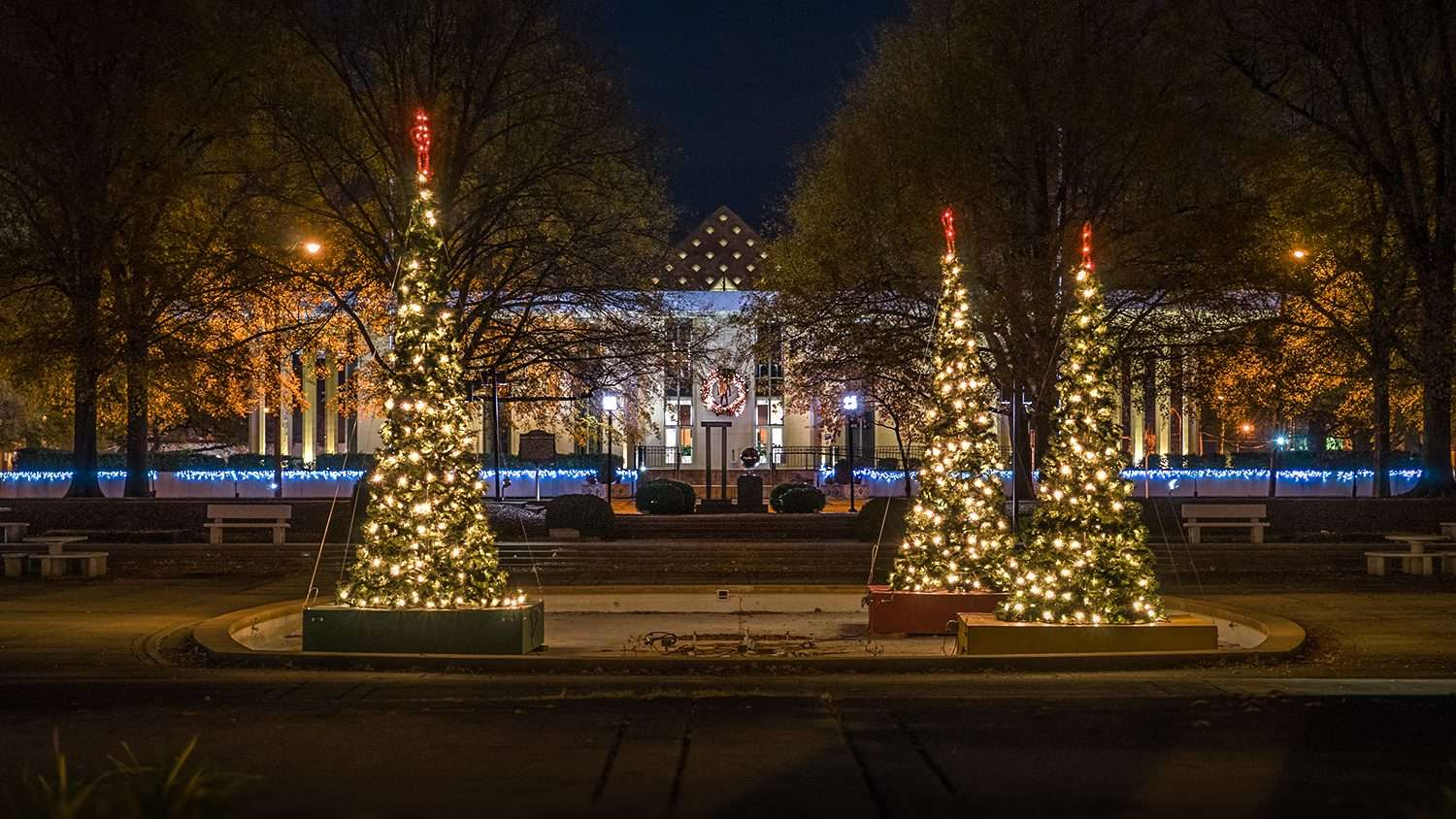Nov 29, 2017 - Paducah City Hall Christmas Trees/photonews247.com