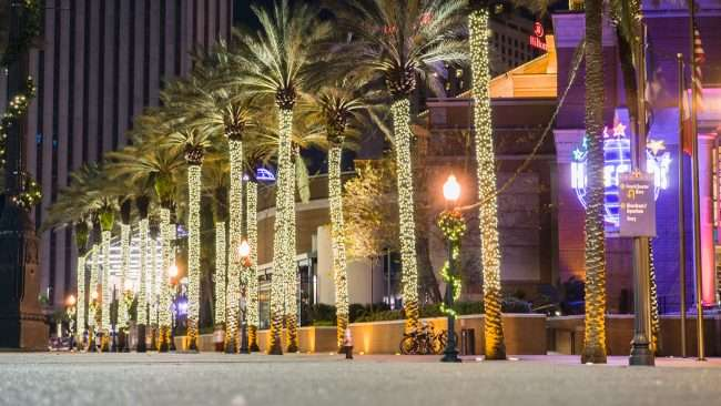 Dec 20, 2017 - Harrah's Casino New Orleans Christmas decorations on palm trees/photonews247.com