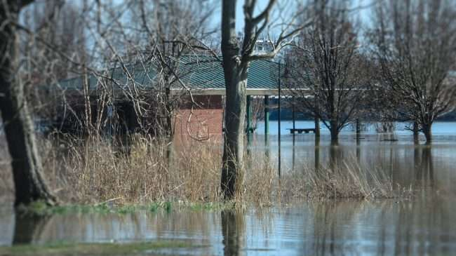 03.02.2018 - Food at Dorothy Miller Park with bathrooms underwater in Metropolis, IL/photonews247.com