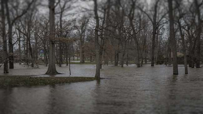 03.02.2018 - Fort Massac Park under water during flood in Metropolis, IL/photonews247.com