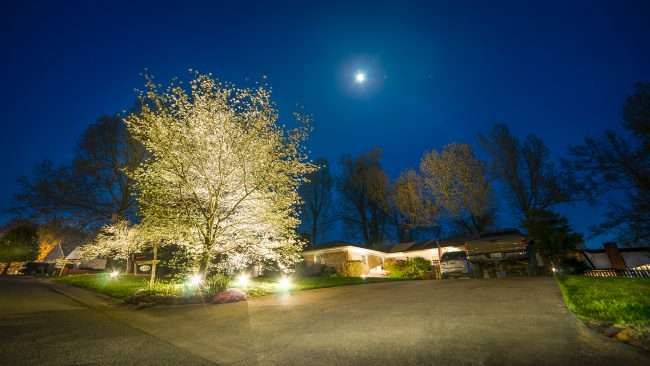 April 26, 2018 - Lighted Dogwood Trail in Paducah showing house decorated with floodlights/photonews247.com